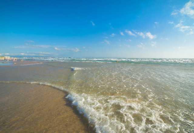 База отдыха Белый Лебедь - пляж