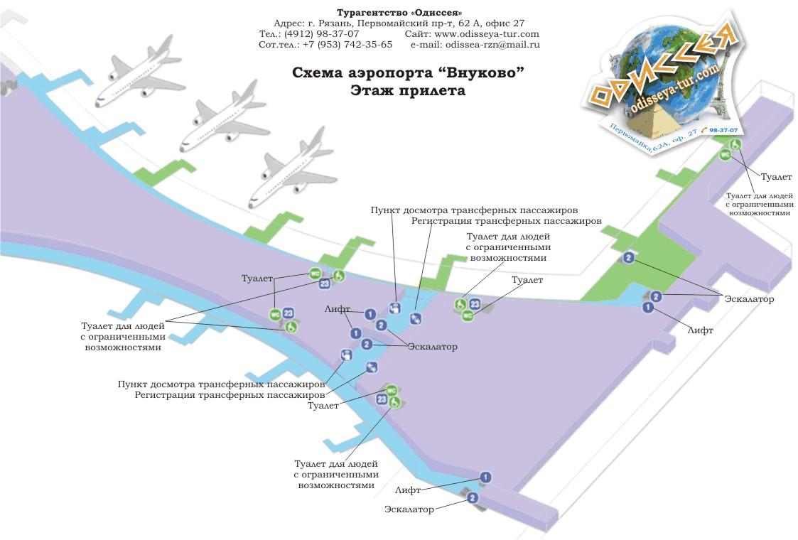 Схема аэропорта внуково терминал а фото 22